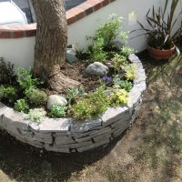 石積の花壇の写真