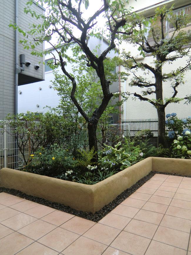 植栽スペースの写真01