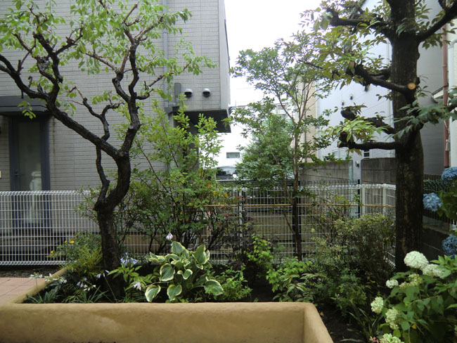 植栽スペースの写真03